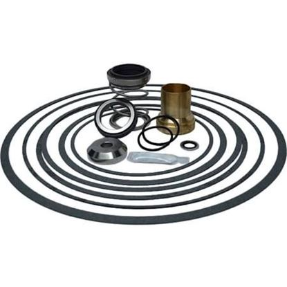 """Picture of 1 1/2"""" Type B Seal Kit For Taco Part# 953-1549-4BRP"""