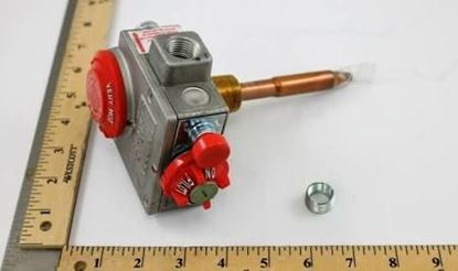 """Picture of 1/2""""NG WTR HTR VLV,180F For Robertshaw Part# 110-353"""