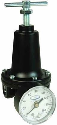 """Picture of 1/2""""REG 300#In 2-125#OutW/Gage For Parker Watts Fluid Air Part# R119-04CG"""