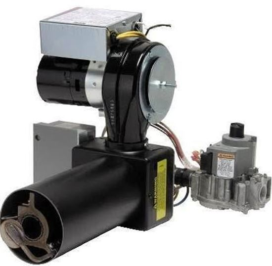 P250af Lpgasburner 120v Di For Wayne Combustion Part