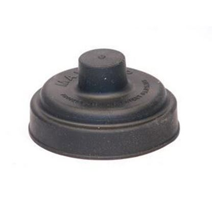 Picture of REGULATOR CAP FOR 325-3 For Miscellaneous Product Part# MAXICAP-3R
